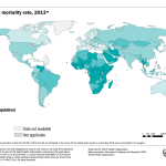 Global Road Traffic Mortality Map
